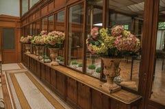Flera krukor dekorerade med blommor i en gammal byggnad, på Bryssel Royaltyfri Bild