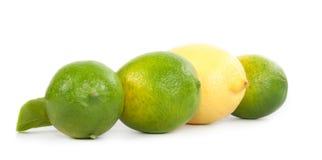 Flera limefrukter och citroner på en vit bakgrund. Arkivfoto