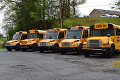 Flera parkerade skolbussar Arkivfoto