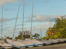 Flera segelbåtar som vilar på kusten, horisontalfotoet, foto tog i Nya Zeeland, foto är usab Arkivfoton