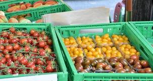 Flera sorter av lokalt fullvuxna tomater på försäljning royaltyfria foton