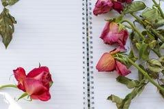 Flera vissna röda rosor är på notepaden Fotografering för Bildbyråer