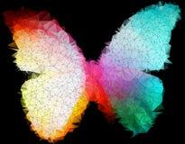 Flerfärgad ljus fjäril på geometriskt svartabstrakt begrepp Royaltyfri Bild