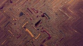 Flerfärgad målad akrylkanfas Kontrastera digitalt tryckpapper Hög-specificerad wood bakgrundsserie Tjock målarfärgyttersida för m royaltyfri foto