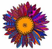 Flerfärgad solros Arkivbild