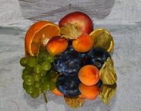 Flerfärgade frukter Arkivfoton