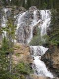 Flernivå-vattenfall i Jasper National Park Royaltyfri Foto