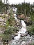 Flernivå-vattenfall i Jasper National Park Arkivbilder