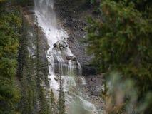 Flernivå-vattenfall i Jasper National Park Royaltyfria Bilder