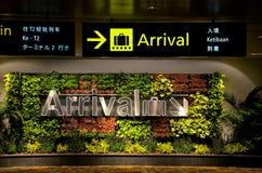 Flerspråkiga ankomsttecken och blommor på flygplatsen Royaltyfri Bild