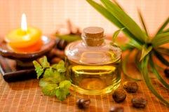 Fles aromatische essentieolie Stock Fotografie