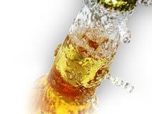 Fles bier Stock Foto