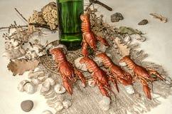 Fles bier met gezouten gekookte rode rivierkreeften op een canvas met zeeschelpen Royalty-vrije Stock Foto's