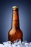 Fles bier met ijs royalty-vrije stock foto's