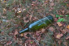 Fles in de struiken royalty-vrije stock afbeelding