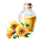 Fles de tint van de calendulagoudsbloem met verse calendula flowe royalty-vrije illustratie
