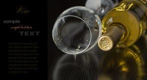 Fles droge witte wijn Royalty-vrije Stock Foto's