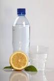 Fles en een citroen stock afbeeldingen