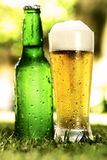 Fles en glas bier buiten op het gras Stock Afbeeldingen