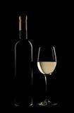 Fles en glas fijne witte wijn Stock Afbeeldingen