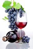 Fles en glas rode die wijn, bos van druiven met bladeren op witte achtergrond worden geïsoleerd Stock Afbeeldingen
