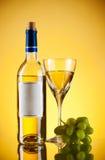 Fles en glas wijn, druivenbos Royalty-vrije Stock Afbeelding