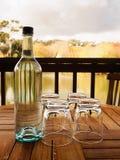 Fles en glazen door het meer Stock Afbeeldingen