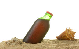 Fles en zeeschelpen Stock Afbeelding