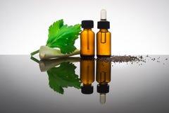 Fles etherische olie met selderiezaden Royalty-vrije Stock Afbeelding