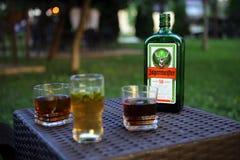 Fles Jagermeister en glazen Royalty-vrije Stock Afbeelding