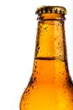 Fles koud bier Royalty-vrije Stock Fotografie