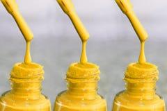 Fles lak voor de vingernagels Vrouwen` s acrylverf, gelverf voor spijkers Lak gemengde kleuren voor vingernagels zorg Stock Afbeelding