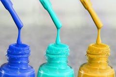 Fles lak voor de vingernagels Vrouwen` s acrylverf, gelverf voor spijkers Lak gemengde kleuren voor vingernagels zorg Stock Fotografie