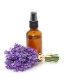 Fles lavendelolie en bos van lavendel Stock Fotografie