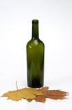 Fles met bladeren Stock Foto