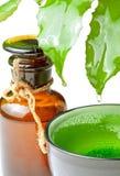 Fles met homeopathiebalsem Stock Foto