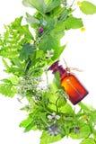Fles met homeopathiebalsem Stock Fotografie