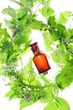 Fles met homeopathiebalsem en houten installaties Stock Foto's