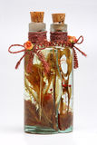 Fles met installaties royalty-vrije stock foto