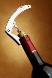 Fles met kurketrekker Stock Fotografie