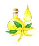 Fles met oliekananga-olie royalty-vrije illustratie