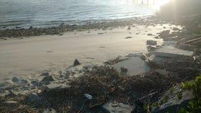 Fles op het strand stock foto's