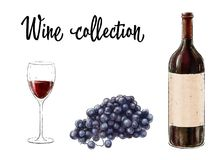 Fles rode die wijn met een glas en druivencluster op witte achtergrond wordt geïsoleerd Wijninzameling Vector illustratie Stock Fotografie