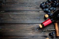 Fles rode wijn met druiven royalty-vrije stock foto