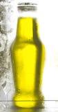 Fles van de ijskast Royalty-vrije Stock Fotografie