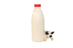 Fles van de koe van de Melk en stuk speelgoed Royalty-vrije Stock Afbeeldingen