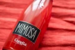 Fles van Mimosa met champagnefluiten Royalty-vrije Stock Afbeeldingen