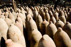 Fles van Pisco, Peru Royalty-vrije Stock Afbeelding