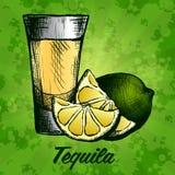 Fles van tequila met kalk en glas Met de hand geschilderd Royalty-vrije Stock Foto's