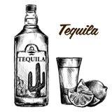 Fles van tequila met kalk en glas Met de hand geschilderd Stock Afbeelding
